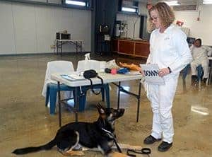 Tracy training dog to read in prison
